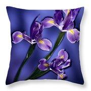 Three Iris Xiphium Throw Pillow