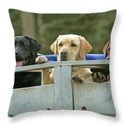 Three Kinds Of Labradors Throw Pillow