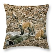 Three Kits Throw Pillow