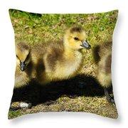 Three Little Goslings Throw Pillow