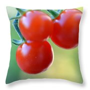 Three Little Tomatoes Throw Pillow