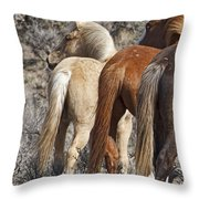 Three Long Tails Throw Pillow