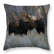 Three Moose In The Woods Throw Pillow