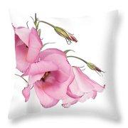 Three Pink Lisianthus Flowers Throw Pillow