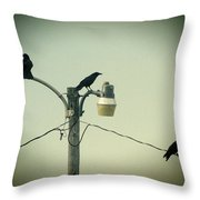 Three Raven Hoedown Throw Pillow