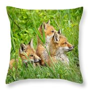 Three Red Fox Pups Throw Pillow