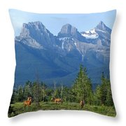 1m3203-three Sisters Faith Hope Charity Throw Pillow
