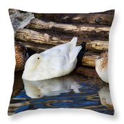 Three Sleeping Ducks Throw Pillow