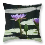 Three Stages Of Blue Bloom Throw Pillow