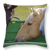 ..three Stooges Throw Pillow