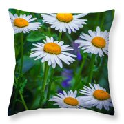 Three Tiers Of Beauty Throw Pillow