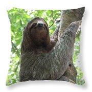 Three Toed Sloth  Throw Pillow