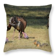 Three Toms And A Squirrel Throw Pillow