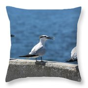 Three Turning Terns Throw Pillow
