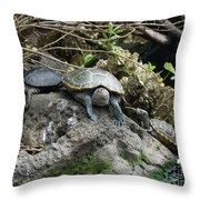 Three Turtles Throw Pillow