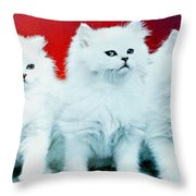 Three White Cats Throw Pillow