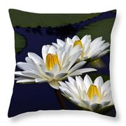 Three White Tropical Water Lilies Version 2 Throw Pillow
