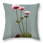 Three Wishes For The New Year Throw Pillow