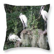Three Wood Storks Throw Pillow