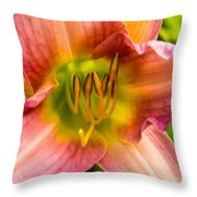 Throat Of Lily Throw Pillow