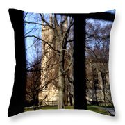 Throgh The Window Throw Pillow