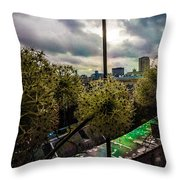 Through A Window Throw Pillow