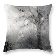 Through Glass -- A Tree In Winter Throw Pillow
