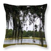 Through Live Oak Tree Throw Pillow