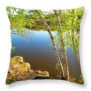 Through The Birch Throw Pillow