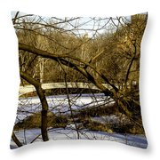 Through The Branches 2 - Central Park - Nyc Throw Pillow