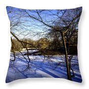 Through The Branches 4 - Central Park - Nyc Throw Pillow