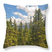 Through The Cabin Window Throw Pillow