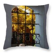Through The Fence Window Throw Pillow