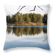 Through The Frame Throw Pillow