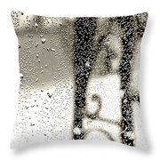Through The Raindrops Throw Pillow