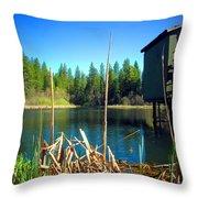 Through The Reeds At Grace Lake Throw Pillow