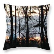 Through The Trees Throw Pillow by Ella Char