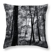 Through The Trees In Black And White Throw Pillow