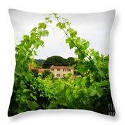 Through The Vines Throw Pillow by Lainie Wrightson