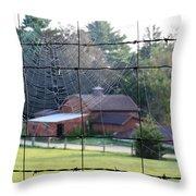 Through The Webs Throw Pillow