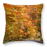 Through The Woods By D. Perry Lawrence Throw Pillow