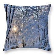 Through The Woods Throw Pillow by Kristin Elmquist
