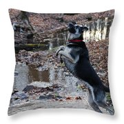 Throwing Stones Throw Pillow