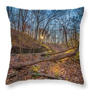 Thru The Woods Throw Pillow