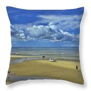 Thumpertown Beach Lowtide Throw Pillow