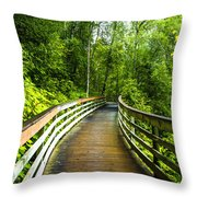 Thunder Bird Viewing Throw Pillow
