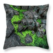 Thunder Hole Algae Throw Pillow