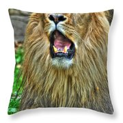 Thunder Vocals Of Lazy Boy At The Buffalo Zoo Throw Pillow
