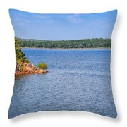 Thunderbird Lake Throw Pillow