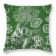 Thuroidea From Kunstformen Der Natur Throw Pillow